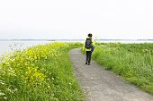Walking along the IJsselmeer in the Netherlands in springtime