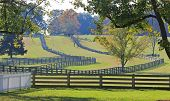 Appomattox Farm with Fences