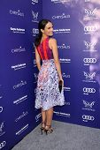 LOS ANGELES - JUN 7:  Jordana Brewster at the 13th Annual Chrysalis Butterfly Ball at Private Mandev