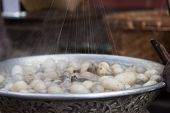 pic of silk worm  - silkworm boil pot, a silk string processing ** Note: Shallow depth of field - JPG