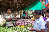 HIKKADUWA, SRI LANKA - FEBRUARY 23, 2014: Local street vendor selling vegetables. The Sunday market