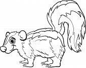 Skunk Animal Cartoon Coloring Page