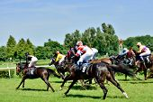 WROCLAW, POLAND - JUNI 8: President's Day at the track Partenice, race for 3-year-old horses only gr