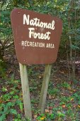 National Forest Sign