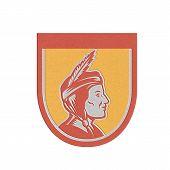 Metallic Native American Indian Chief Shield Retro