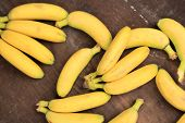 picture of bunch bananas  - Bunch of mini bananas on color wooden background - JPG