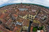 Fisheye view cityscape of Lucca with Guinigi tower
