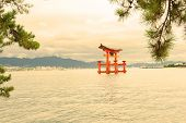 Great floating gate (O-Torii) on Miyajima island near Itsukushima shinto shrine, Japan in a warm tin