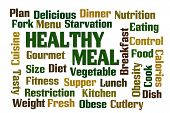 Healthy Meal word cloud with white background
