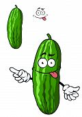Green cartoon cucumber vegetable