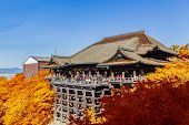 Kiyomizu-dera Temple Kyoto  With Autumn Leaves, Japan.
