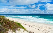 Tropical beach and sea on Bahamas island of Eleuthera