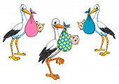 Cute cartoon storks carrying babies
