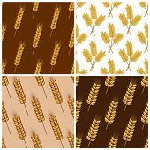 Seamless patterns of wheat and cereal ears