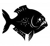 stock photo of piranha  - Monochrome piranha illustration isolated on white background - JPG
