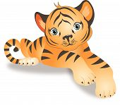 stock photo of tiger cub  - Tiger Young Cub Orange with Black Stripes vector illustration - JPG