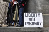 foto of tyranny  - people protesting on courthouse steps against the government - JPG