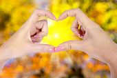 Woman Hands In The Form Of Little Heart Over Bokeh Background, Texture