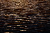 Ripples on water surface during sunset