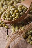 Raw Green Mung Bean In Wooden Spoon Macro. Vertical
