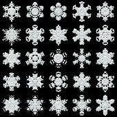 25 Snowflakes On Black Background