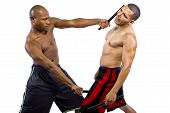 picture of filipino  - Two muscular martial artists demonstrating the Filipino Martial Art Kali Escrima or Arnis - JPG