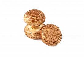 image of crimini mushroom  - fresh crimini mushroom isolated on white background - JPG