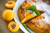 stock photo of sponge-cake  - Sponge cake with apricot and powdered sugar - JPG