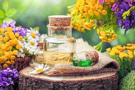 image of wildflowers  - Bottles of essential oil or potion healing herbs and wildflowers - JPG