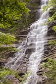 Wald Wasserfall