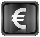 Euro Icon.