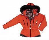 foto of jupe  - red jacket - JPG