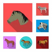 Isolated Object Of Trot And Running Logo. Set Of Trot And Clipart Vector Icon For Stock. poster