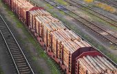 Freight train loaded with pine trunks.