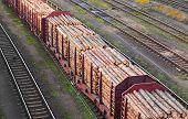 Tren de carga cargados de troncos de pino.