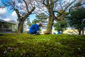Gardeners Working In Kenrokuen Garden One Of The Most Beautiful Landscape Gardens In Japan, Locate I poster