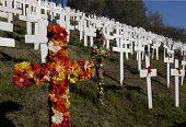 Lafayette Crosses