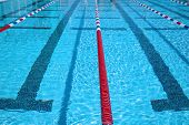 picture of swim meet  - Swimming pool - JPG