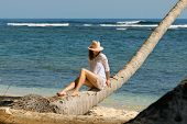 Beautiful Woman Sitting On Palm Tree On The Beach. Healthy People Lifestyle. Woman Relaxing On The B poster