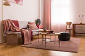 Elegant Living Room Interior With Trendy Grey Sofa With Pastel Pink Pillow And Burgundy Blanket, Woo poster