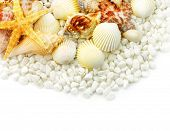 Seashells and white pebbles isolated on white background