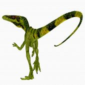 Juravenator Dinosaur Tail 3d Illustration - Juravenator Was A Carnivorous Theropod Dinosaur That Liv poster