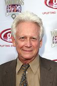 LOS ANGELES - SEP 29:  Bruce Davison arrives at the 40th Anniversary of