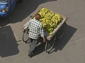 A hawker selling bananas