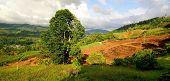 Agricultura de montaña