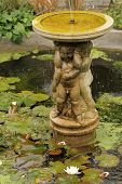 Small garden fountain