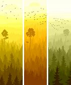 Vertical Banners Of Hills Coniferous Wood.
