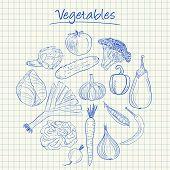 Vegetables Doodles - Squared Paper