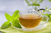 picture of naturopathy  - Mint Herbal Tea in a glass cup - JPG