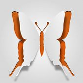 High resolution 3D abstract concept or conceptual white paper with orange background butterfly shape or symbol